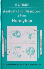 fotografie - kniha Anatomy and Dissection of the Honeybee