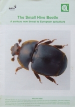 fotografie - kniha The Small Hive Beetle